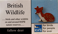 RSPB Pin Badge Collection